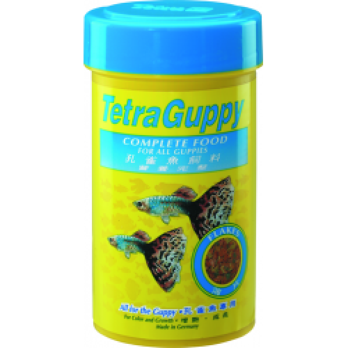 Neon Tetras And Guppies Tetra Guppy Flakes 75 g